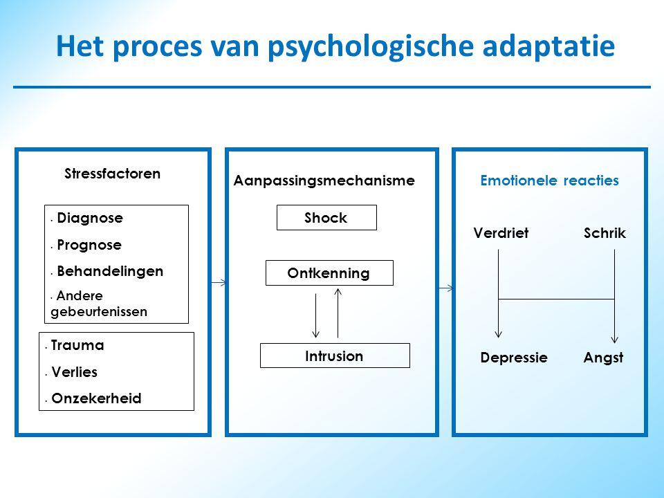 Het proces van psychologische adaptatie