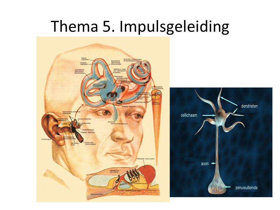Thema 5. Impulsgeleiding
