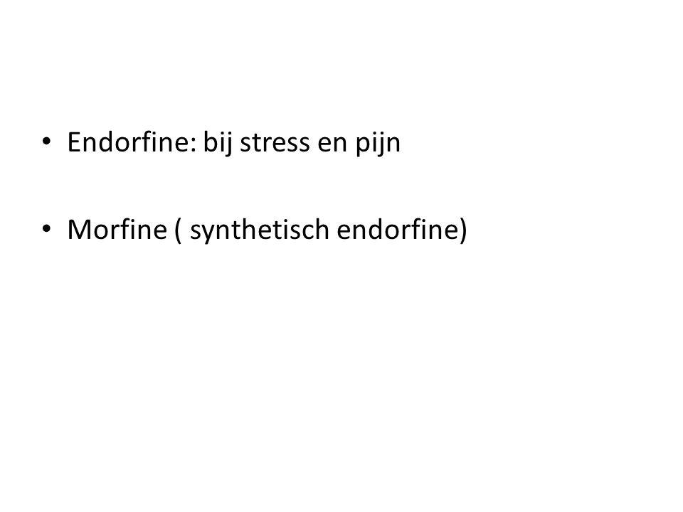 Endorfine: bij stress en pijn