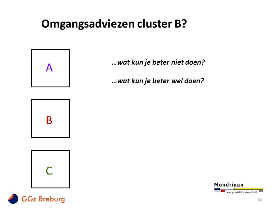 Omgangsadviezen cluster B