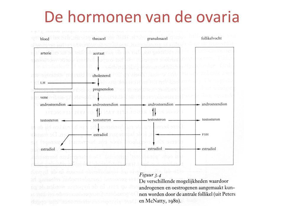 De hormonen van de ovaria
