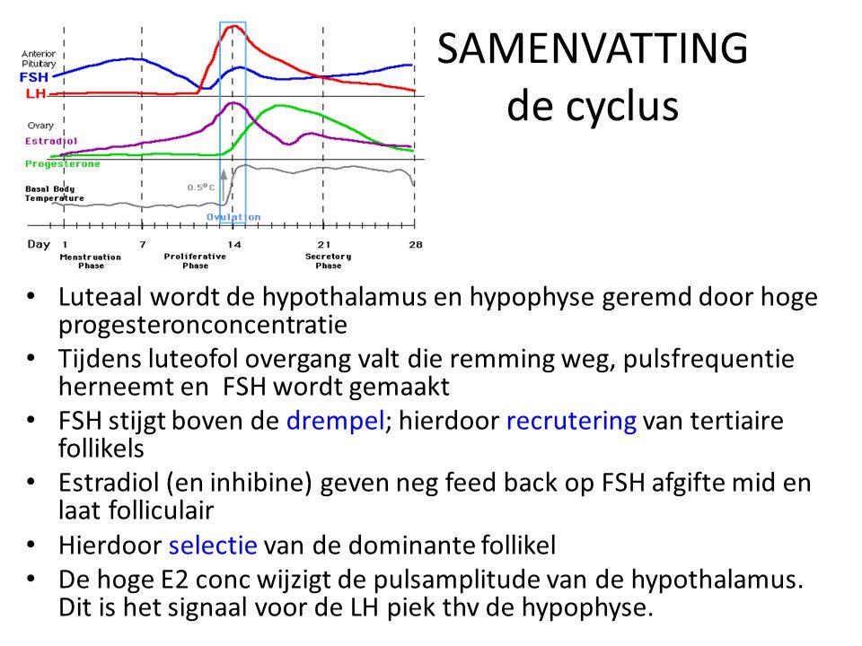 SAMENVATTING de cyclus