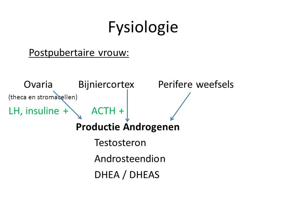 Fysiologie Postpubertaire vrouw: