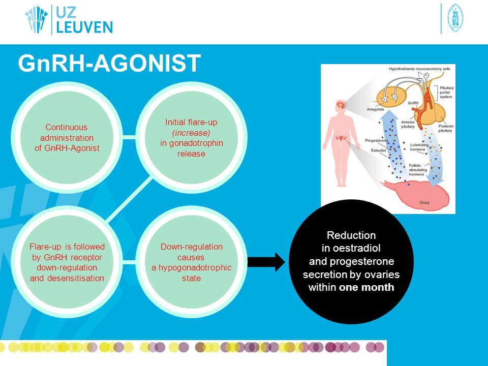 GnRH-agonist Continuous administration of GnRH-Agonist. Initial flare-up (increase) in gonadotrophin release.