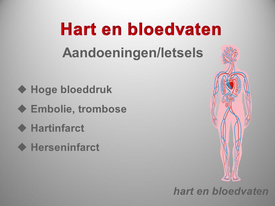 Hart en bloedvaten Aandoeningen/letsels Hoge bloeddruk