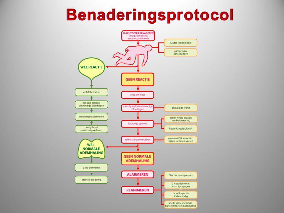 Benaderingsprotocol stroomschema