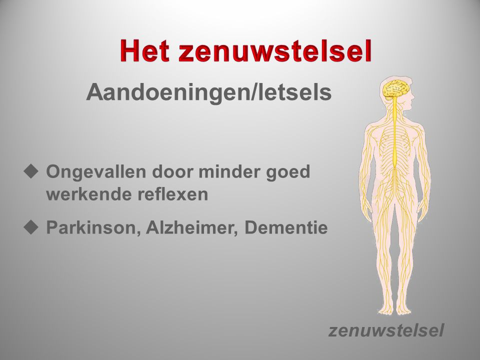 Het zenuwstelsel Aandoeningen/letsels