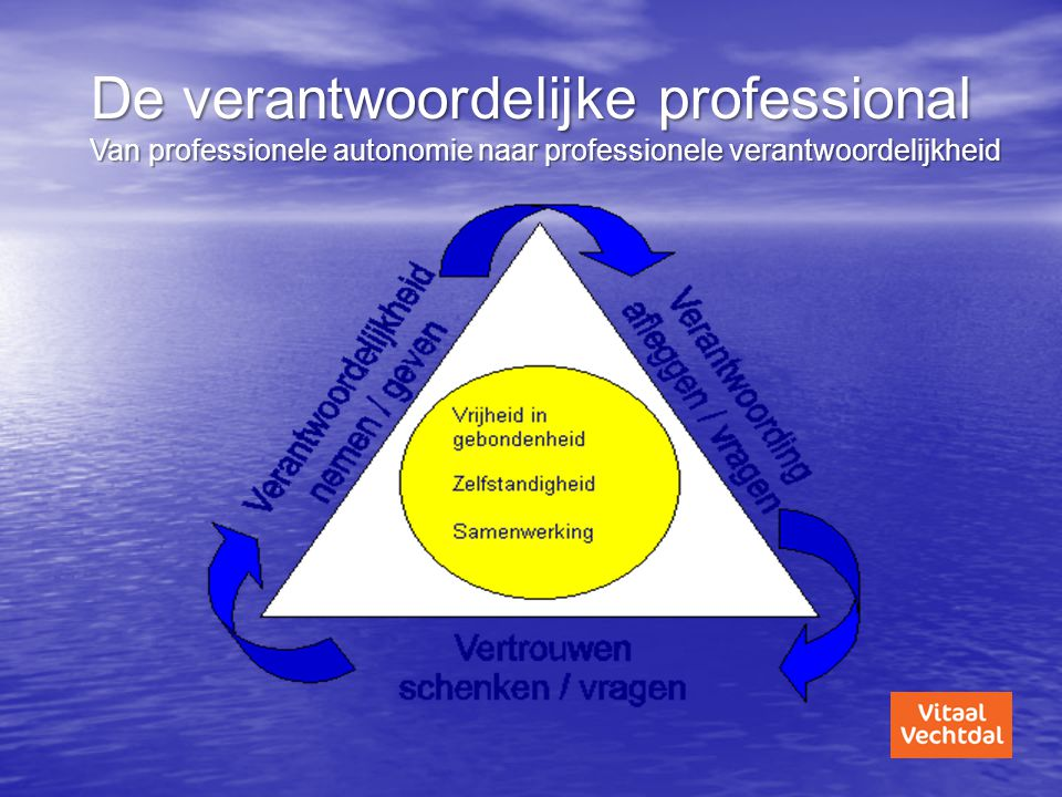 De verantwoordelijke professional