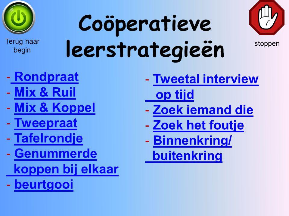 Coöperatieve leerstrategieën