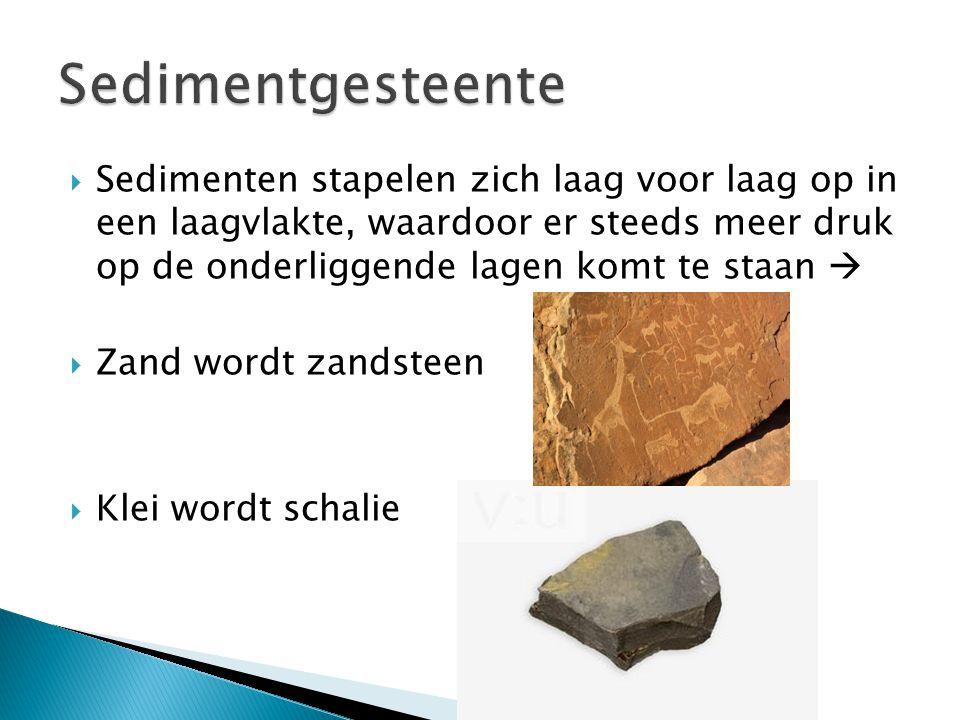 Sedimentgesteente
