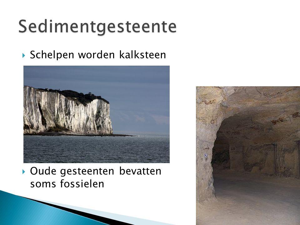 Sedimentgesteente Schelpen worden kalksteen Oude gesteenten bevatten