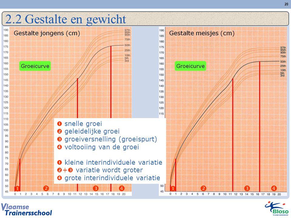 2.2 Gestalte en gewicht  snelle groei  geleidelijke groei