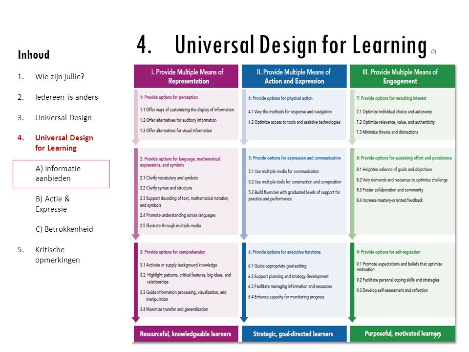 Universal Design for Learning (3)