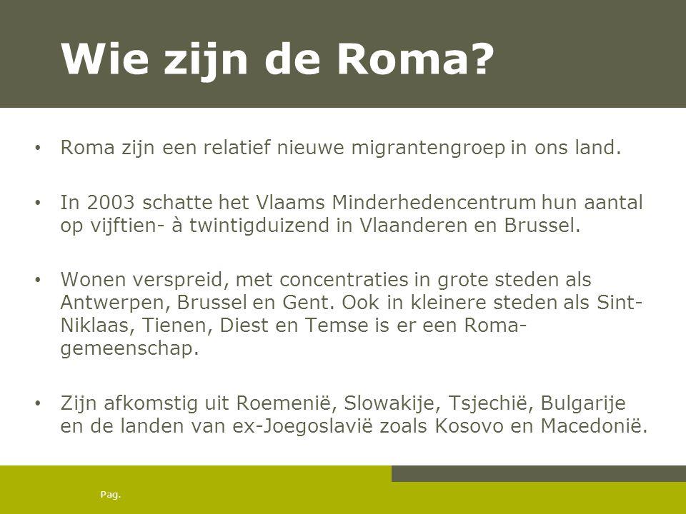 Wie zijn de Roma Roma zijn een relatief nieuwe migrantengroep in ons land.