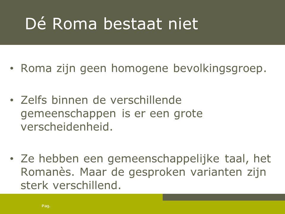 Dé Roma bestaat niet Roma zijn geen homogene bevolkingsgroep.