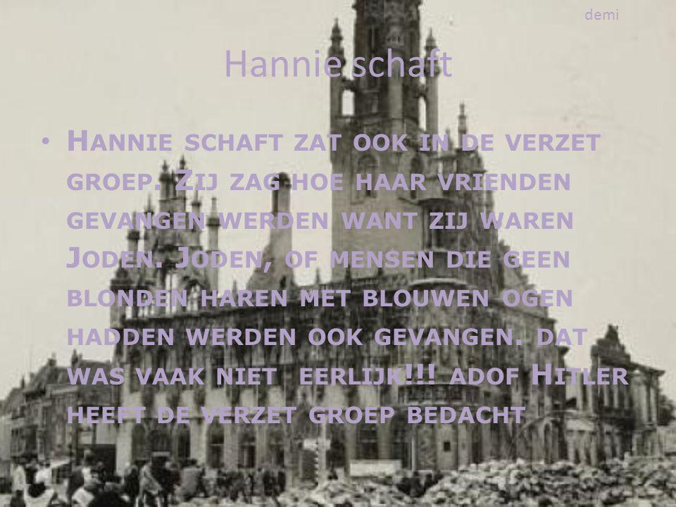 demi Hannie schaft.