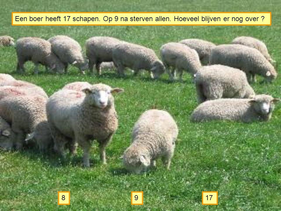 Een boer heeft 17 schapen. Op 9 na sterven allen