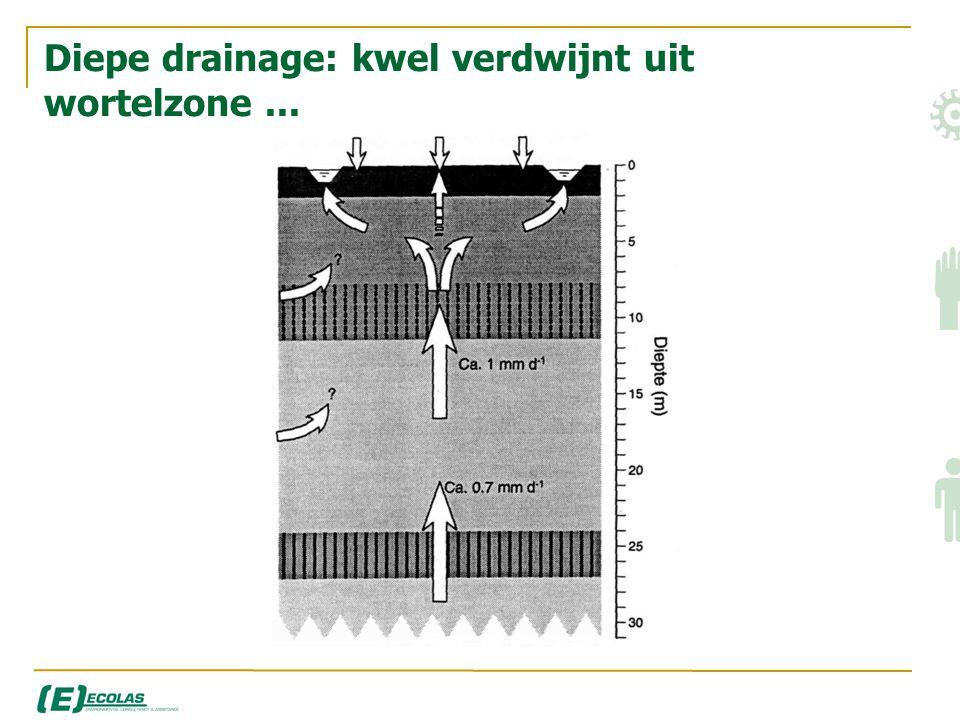 Diepe drainage: kwel verdwijnt uit wortelzone ...