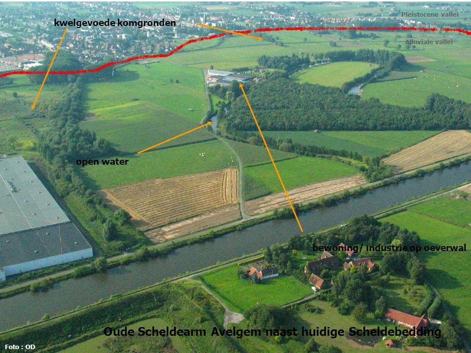 Oude Scheldearm Avelgem naast huidige Scheldebedding