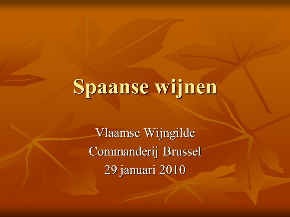 Vlaamse Wijngilde Commanderij Brussel 29 januari 2010