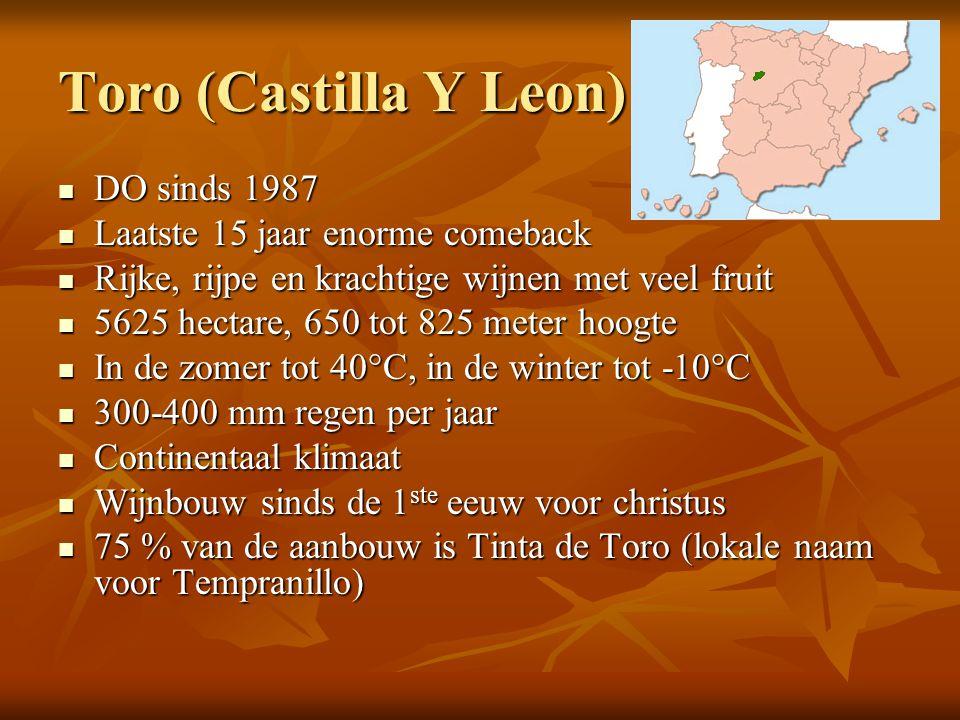 Toro (Castilla Y Leon) DO sinds 1987 Laatste 15 jaar enorme comeback