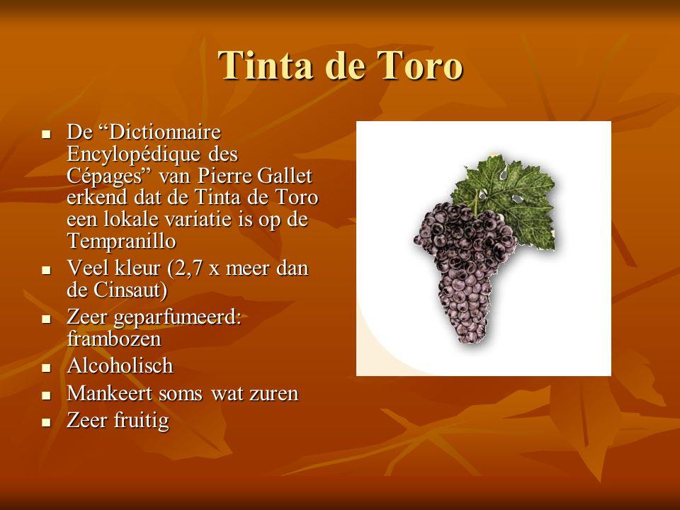 Tinta de Toro De Dictionnaire Encylopédique des Cépages van Pierre Gallet erkend dat de Tinta de Toro een lokale variatie is op de Tempranillo.