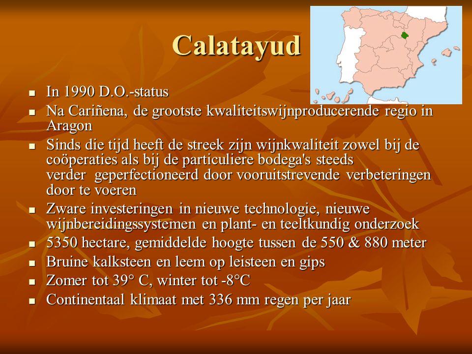 Calatayud In 1990 D.O.-status