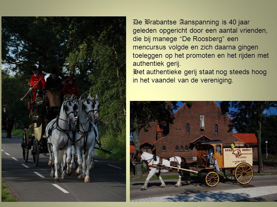 De Brabantse Aanspanning is 40 jaar geleden opgericht door een aantal vrienden, die bij manege De Roosberg een mencursus volgde en zich daarna gingen toeleggen op het promoten en het rijden met authentiek gerij.