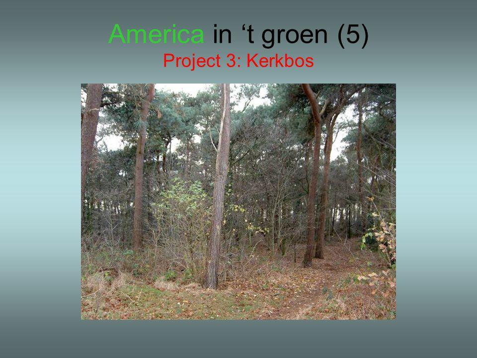 America in 't groen (5) Project 3: Kerkbos