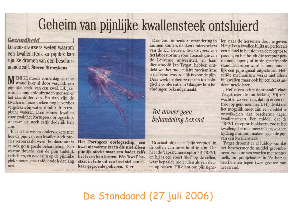 De Standaard (27 juli 2006)