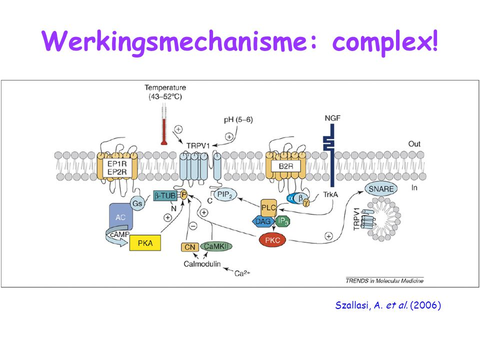 Werkingsmechanisme: complex!