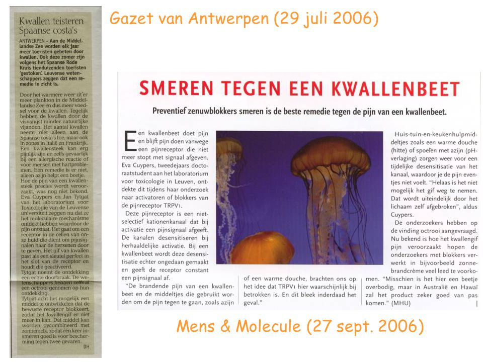 Gazet van Antwerpen (29 juli 2006)