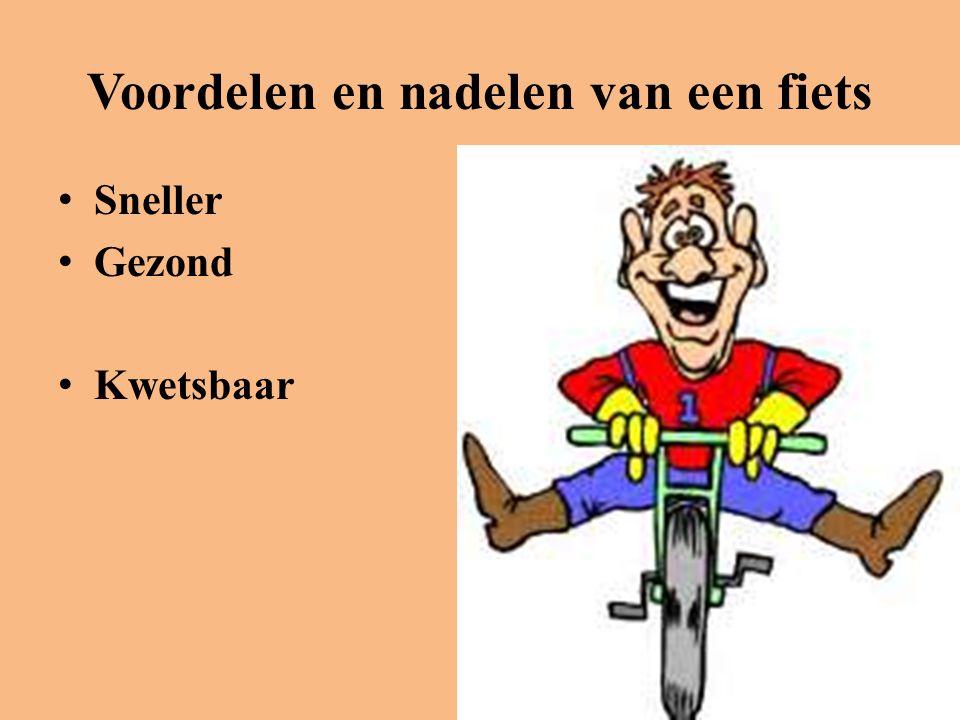 Voordelen en nadelen van een fiets