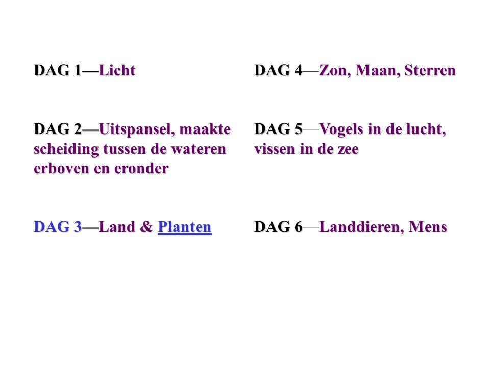 DAG 1—Licht DAG 2—Uitspansel, maakte scheiding tussen de wateren erboven en eronder. DAG 3—Land & Planten.