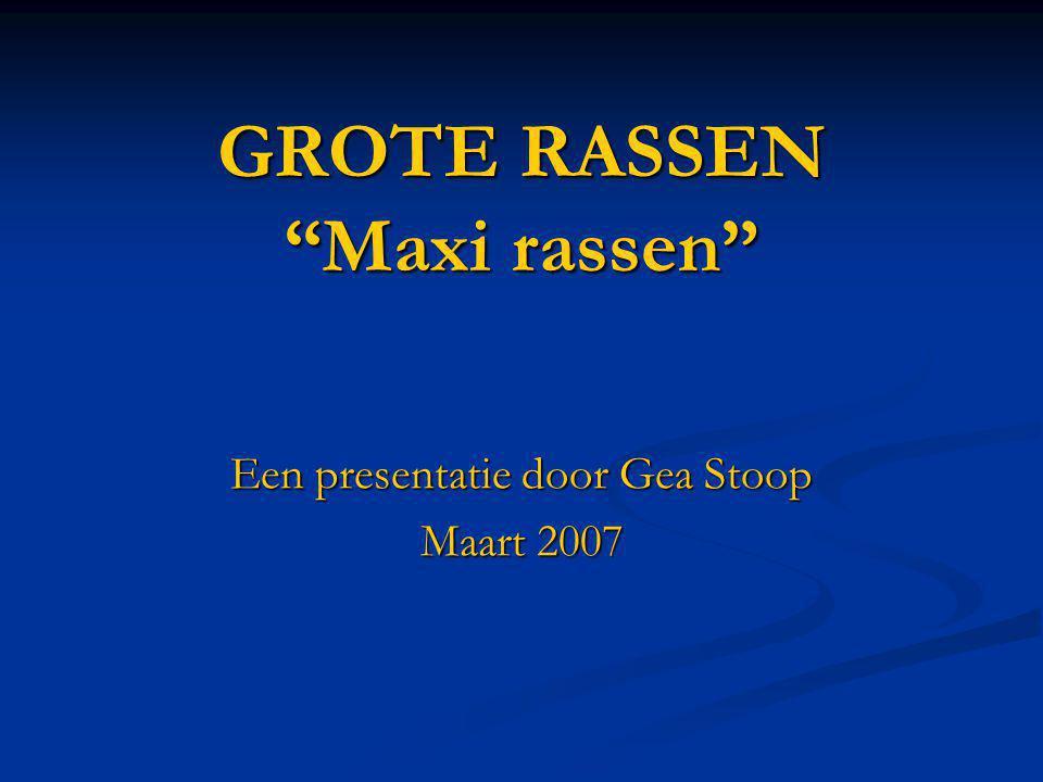 GROTE RASSEN Maxi rassen