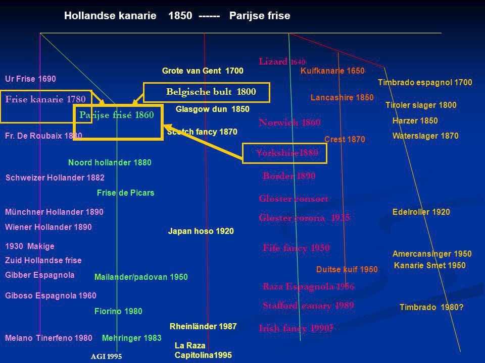 Hollandse kanarie 1850 ------ Parijse frise
