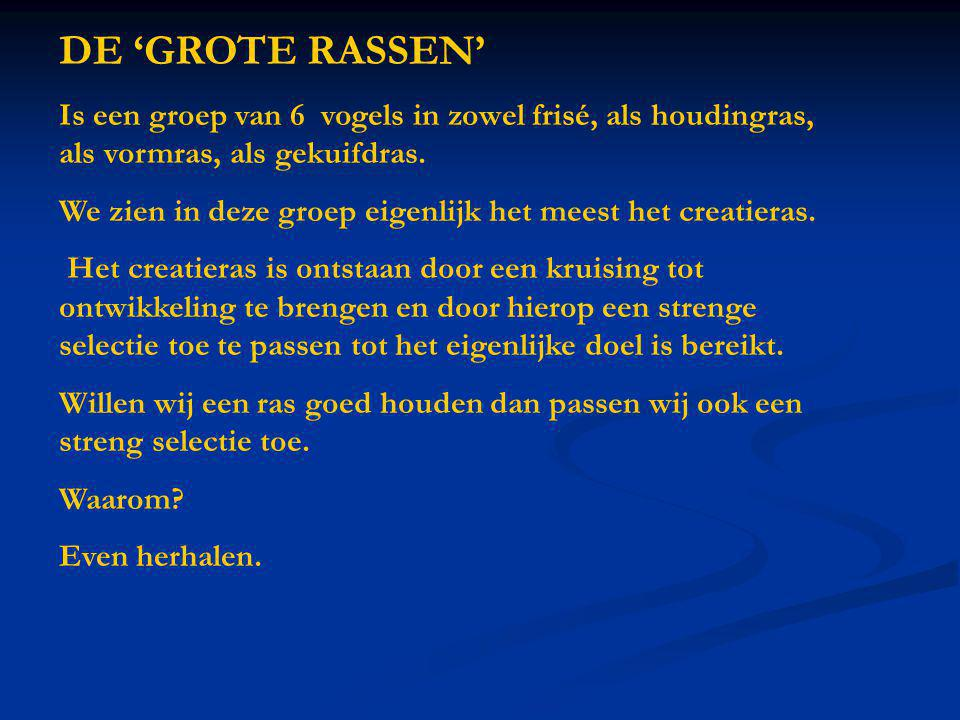 DE 'GROTE RASSEN' Is een groep van 6 vogels in zowel frisé, als houdingras, als vormras, als gekuifdras.