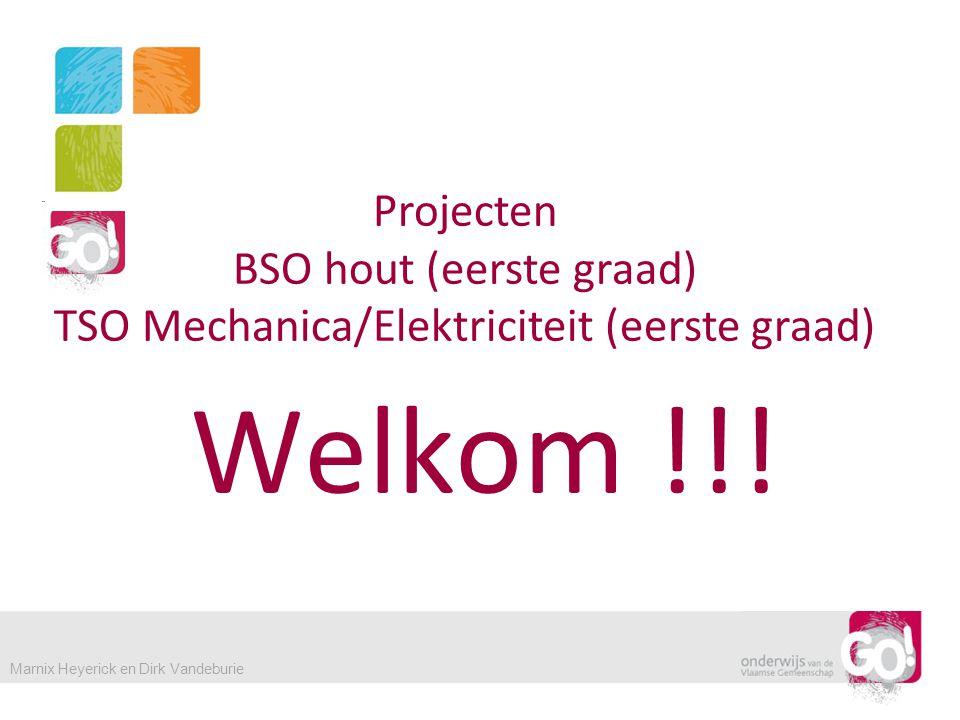 Welkom !!! Projecten BSO hout (eerste graad)