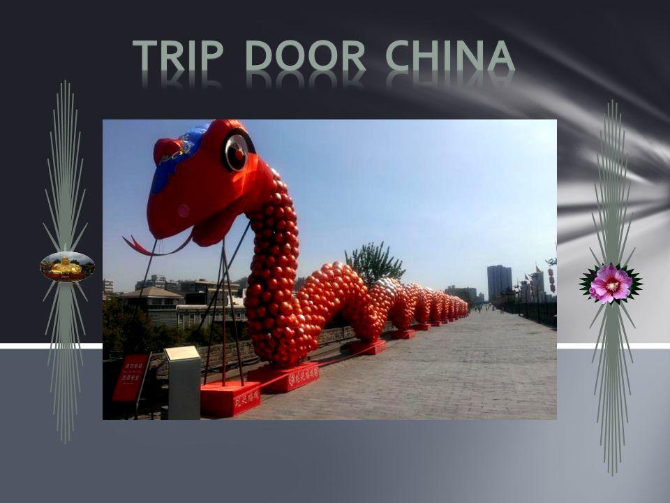 Trip door China Trip door China