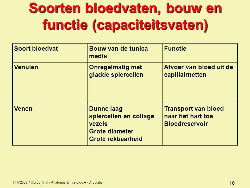 3 soorten bloedvaten