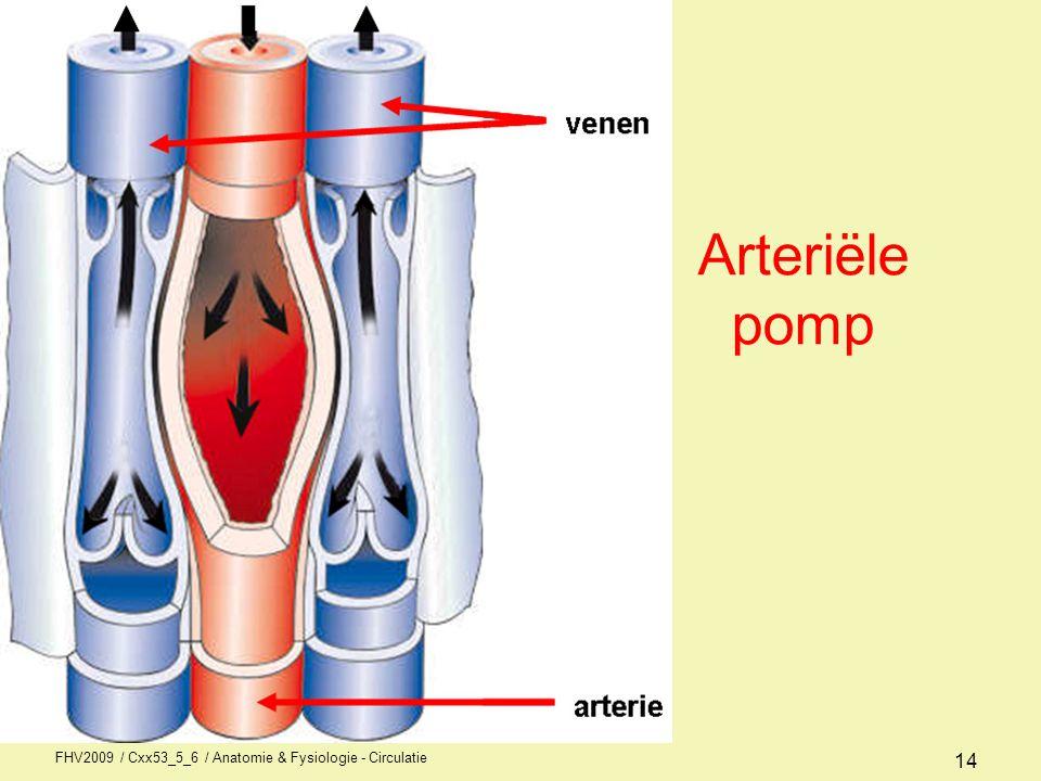 Arteriële pomp FHV2009 / Cxx53_5_6 / Anatomie & Fysiologie - Circulatie