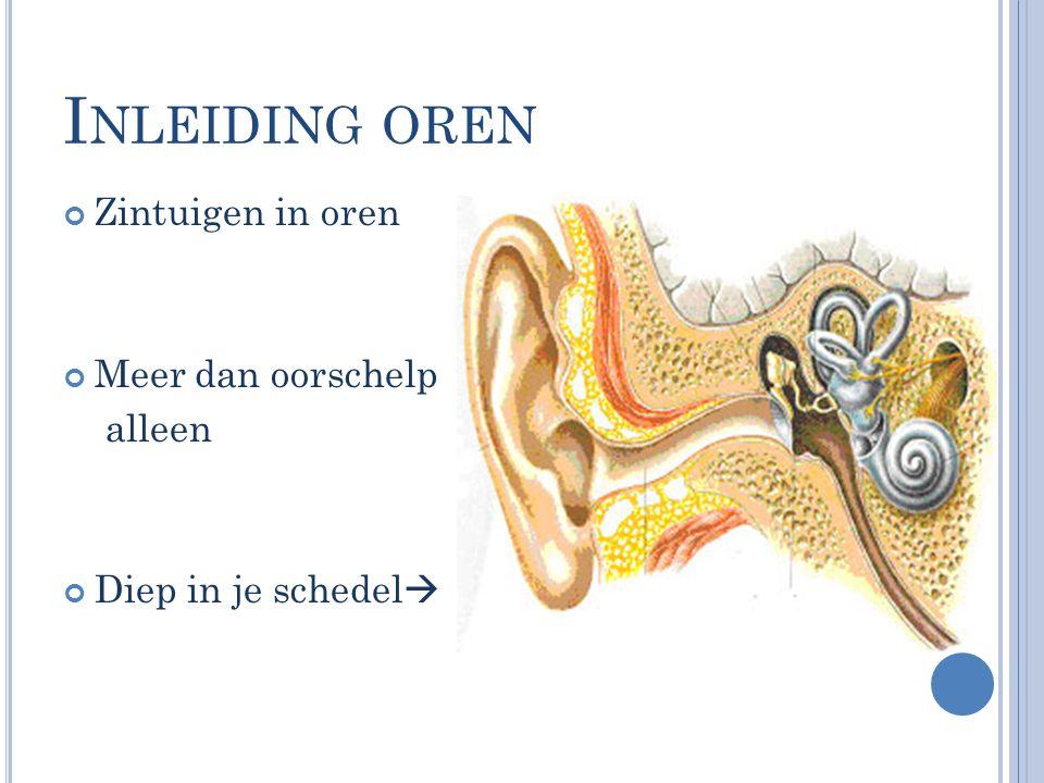 Inleiding oren Zintuigen in oren Meer dan oorschelp alleen
