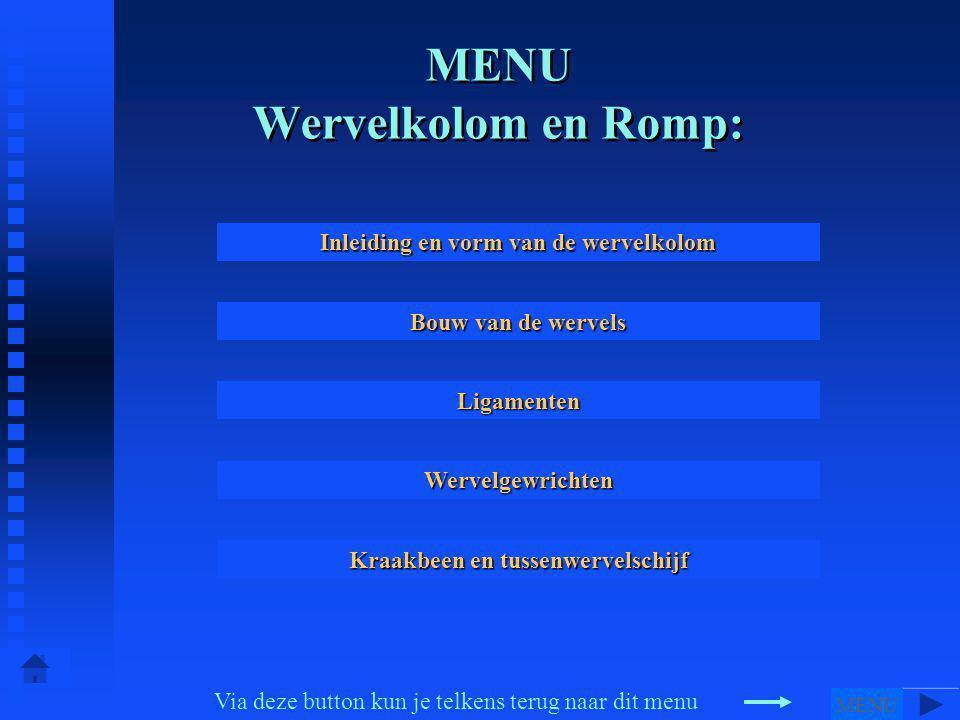 MENU Wervelkolom en Romp: