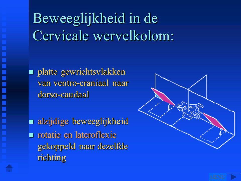 Beweeglijkheid in de Cervicale wervelkolom:
