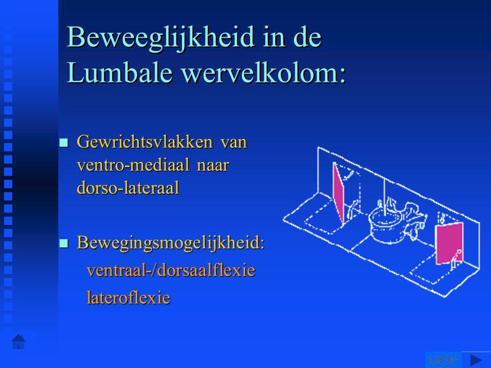 Beweeglijkheid in de Lumbale wervelkolom: