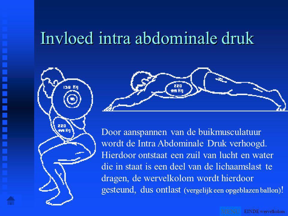 Invloed intra abdominale druk