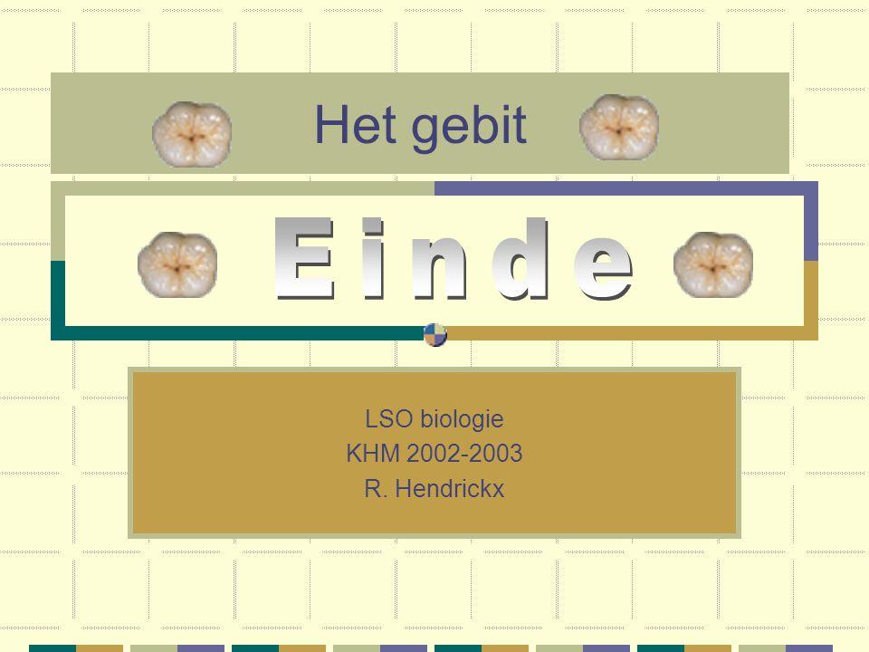 LSO biologie KHM 2002-2003 R. Hendrickx
