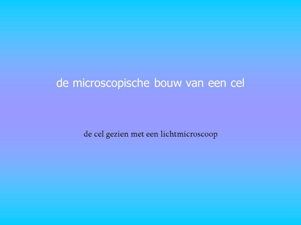 de microscopische bouw van een cel