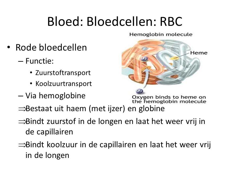 Bloed: Bloedcellen: RBC