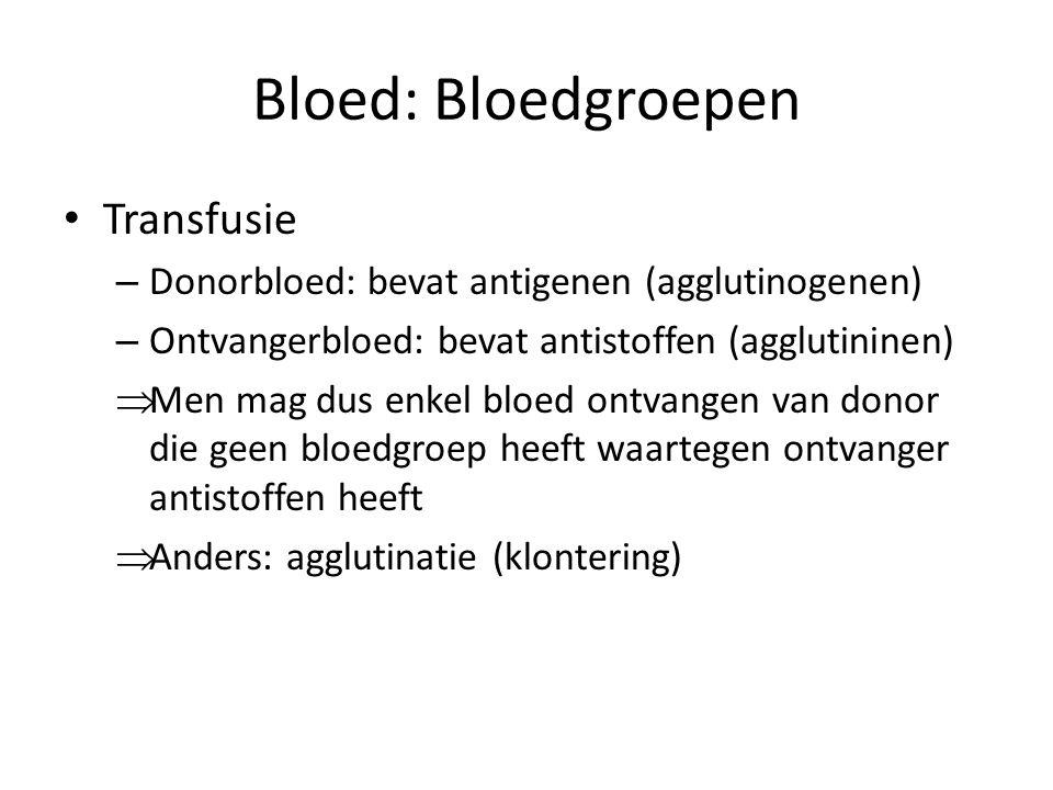 Bloed: Bloedgroepen Transfusie